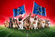 Media Markt - Das große EURO #OsterhasenRasen